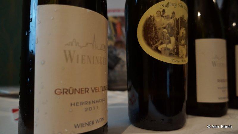 vinuri 1